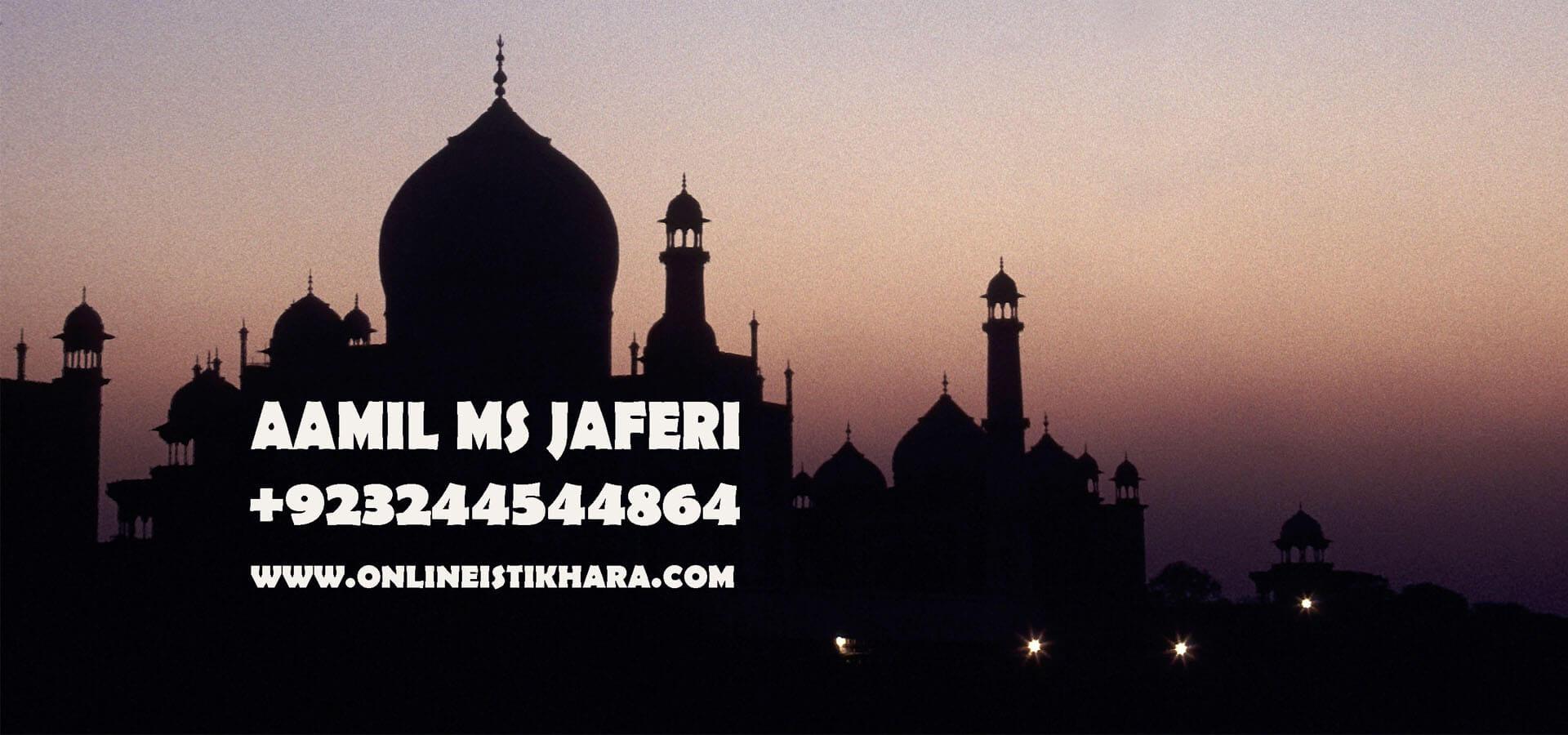 Aamil Ms Jaferi